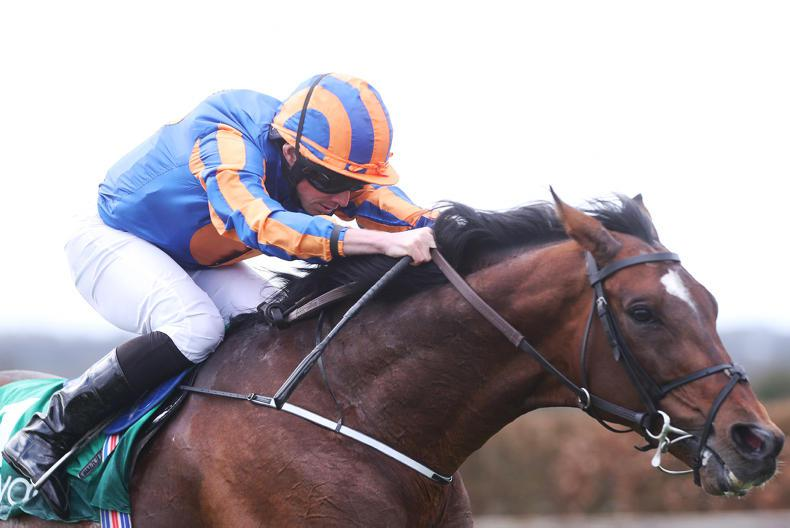 NAVAN SUNDAY: Order Of St George steals the show