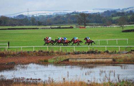 Just Wait And See takes top honours at Punchestown