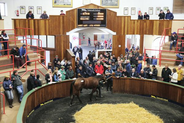 All key figures rise at Fairyhouse
