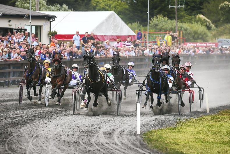 HARNESS RACING: Clarification needed on importing Trotteur Francais