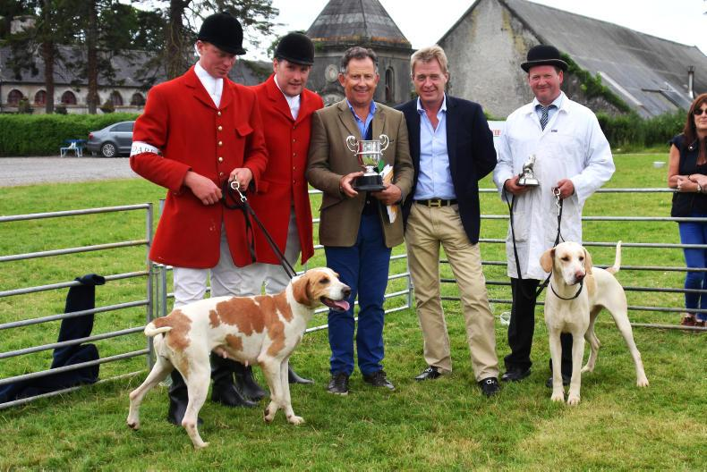 PONY TALES:  New competition at Stradbally Hound Show