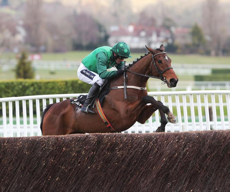 Footpad checks in for Ryanair Novice Chase at Punchestown