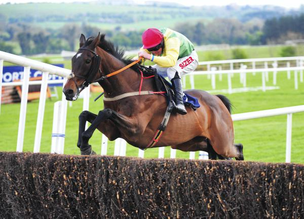 Sizing Europe has Gowran Park in his sights