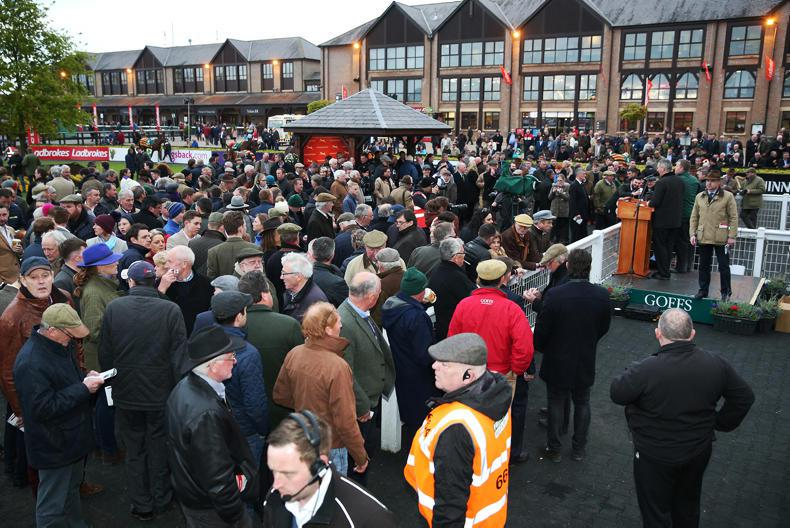 Top price of €320,000 paid at Goffs Punchestown Sale