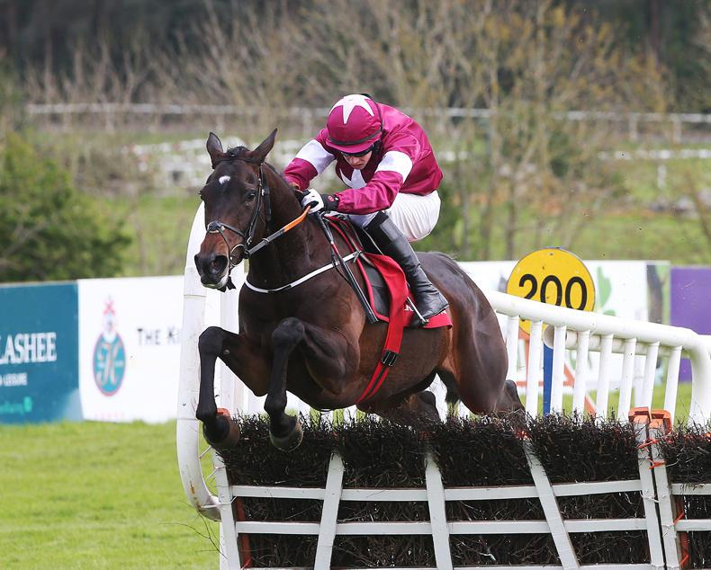 PUNCHESTOWN PREVIEW: Apple's can be best again