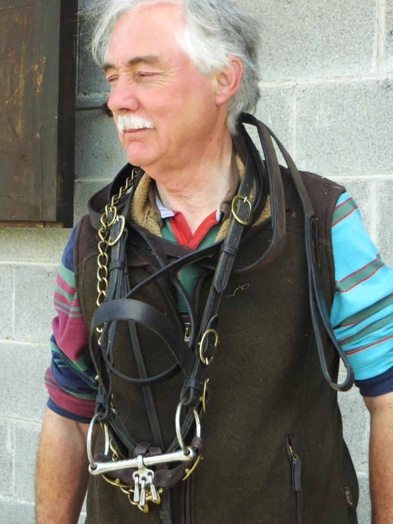 Des Barnwell: An outstanding equine clinician