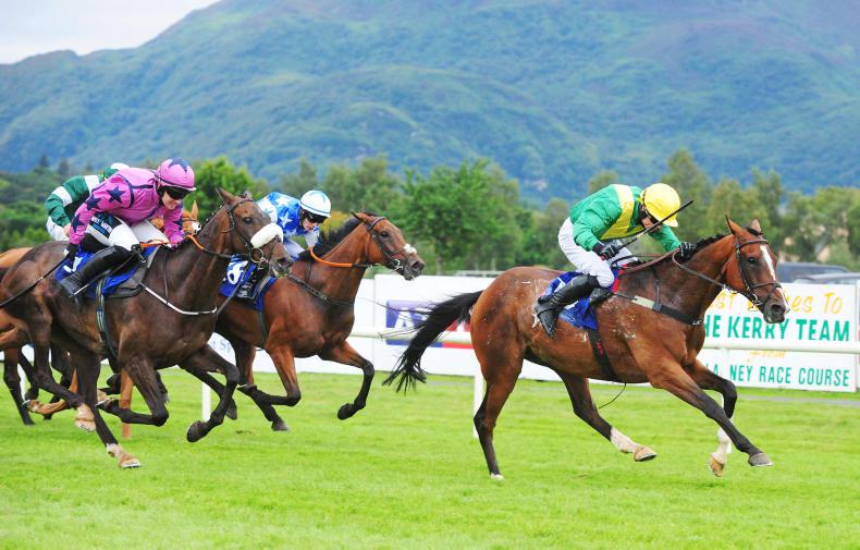 PUNCHESTOWN SATURDAY: Light weight to aid Lasoscar cause