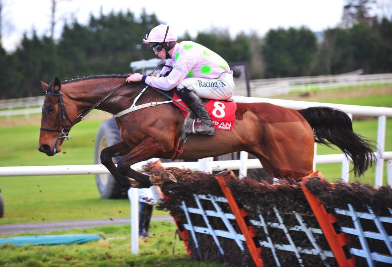 Saldier leads home Willie Mullins domination at Punchestown