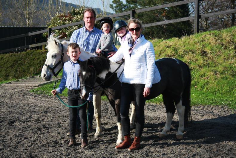 FEATURE:  Cooley Sport Horses - a meteoric rise