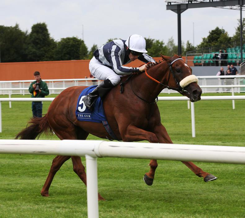 Liquid Amber burning brightly for 1000 Guineas at Newmarket
