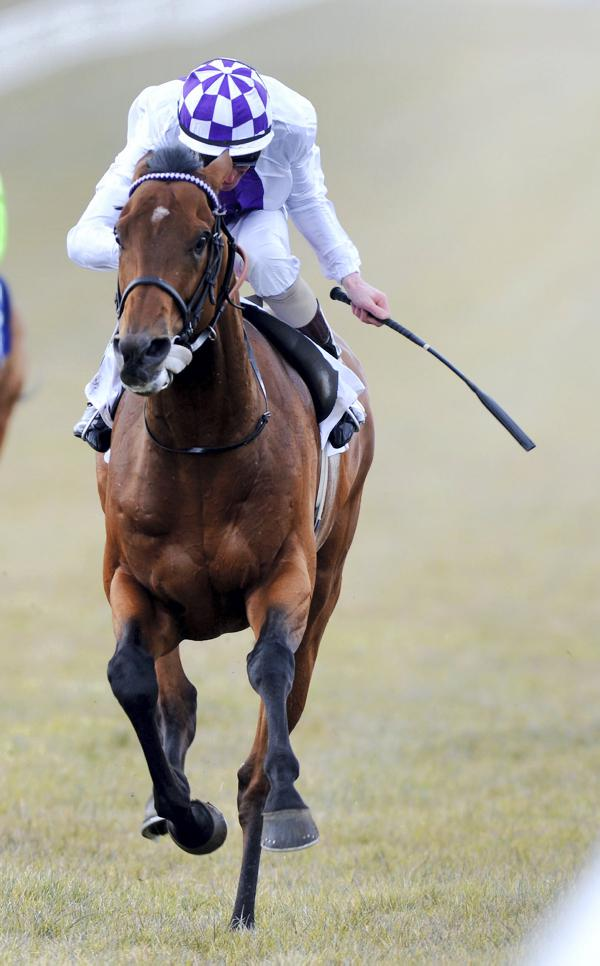 Teofilo triumphs with blacktype winners
