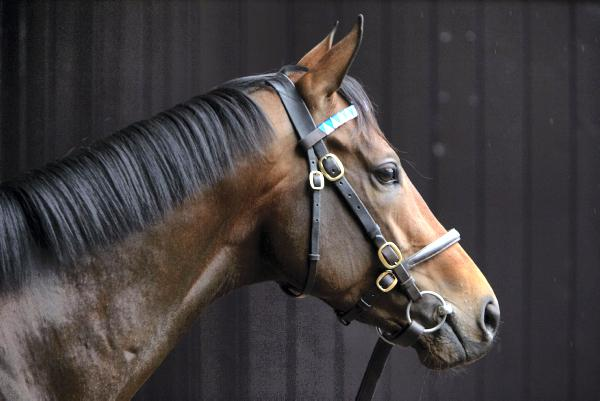Masterstroke bound to attract attention
