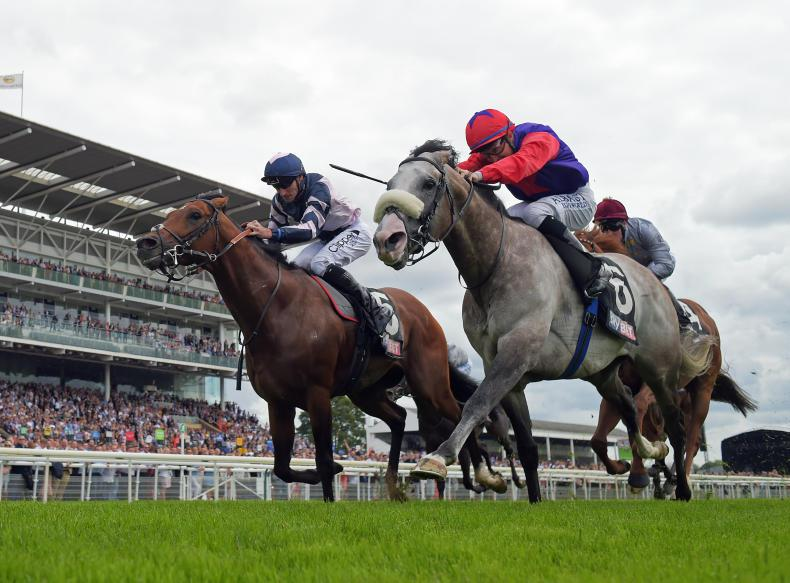 Stellar entries for bank holiday flat meeting at Naas Racecourse