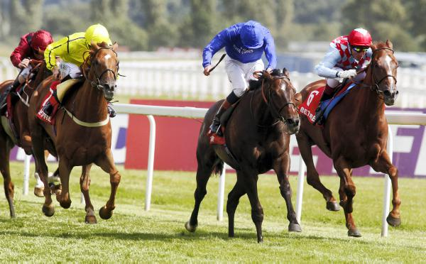 Seismos right sort for Irish St Leger