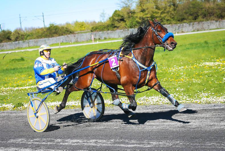 HARNESS RACING:  Bian Luis brings it back for Buster