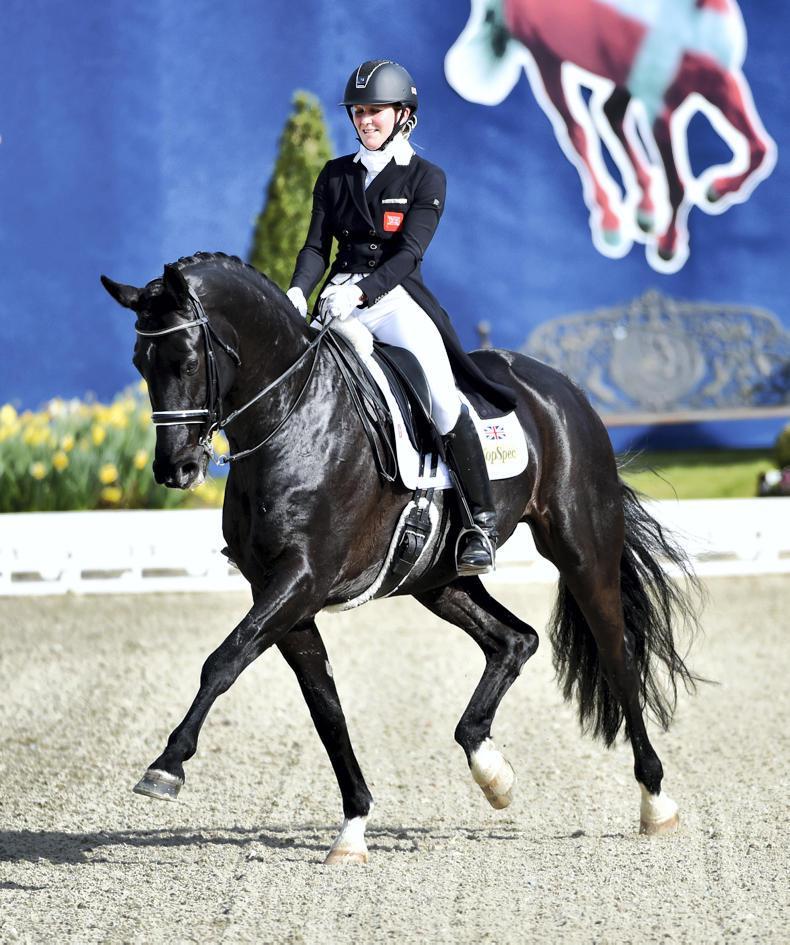 HORSE SENSE: Electrolytes explained? No sweat!