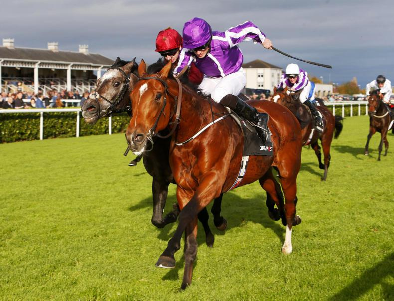 BRITISH PREVIEW: Warrior worthy of Guineas support