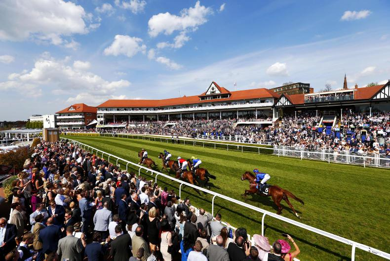 Imi: 'Irish racing has missed a significant opportunity'