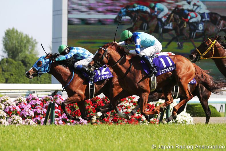 JAPAN:  Rainbow Line surges home for first Group 1