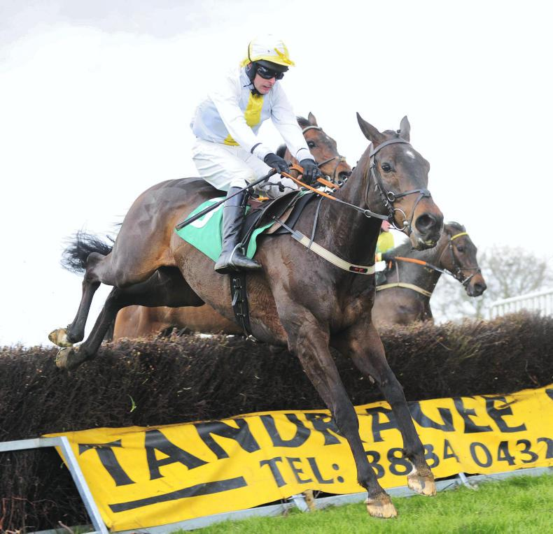 TAYLORSTOWN SATURDAY NEWRY HUNT: Close call victory for Captain Cook