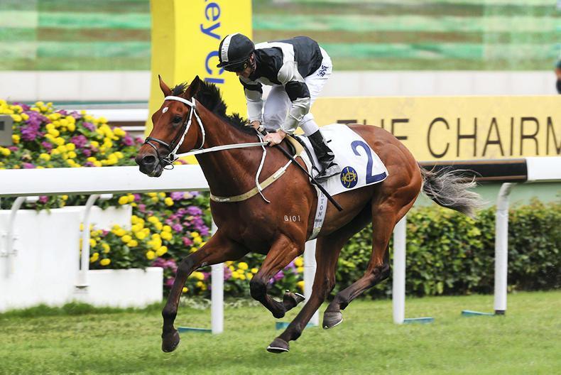 HONG KONG: Exultant excels in Queen Mother Memorial Cup rout