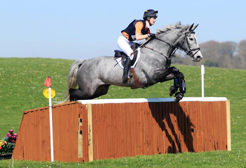 EVENTING:  Galwaybay Mentor delivers for Morrison
