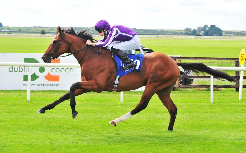 Saxon Warrior powers to Guineas glory for Aidan and Donnacha O'Brien