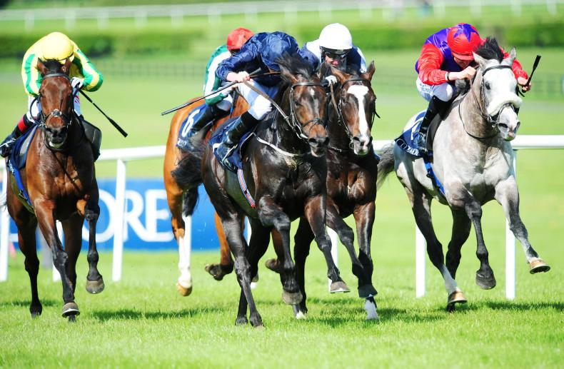 NAAS MONDAY: Group 1 targets on the horizon for Cliffs