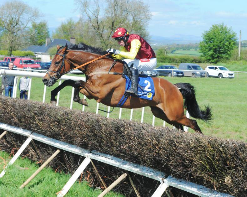 DROMAHANE SUNDAY MUSKERRY FOXHOUNDS: Sydney Paget continues to shine