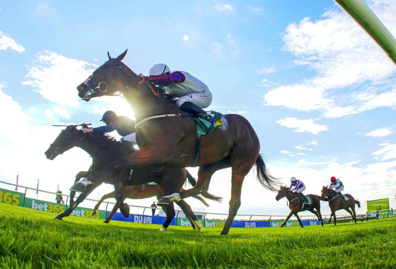 Karl Burke cool on Curragh for Laurens as French Oaks the 'likely' aim