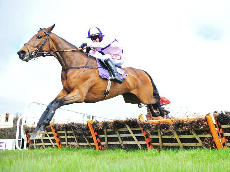 WEXFORD SATURDAY: Flamingo's Court helps Cooper to a treble