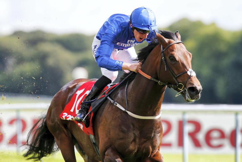 Harry Angel firmly on course for Duke of York reappearance on the Knavesmire