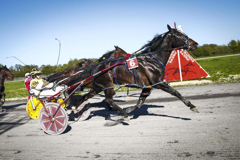 HARNESS RACING: Cowden steps up in class