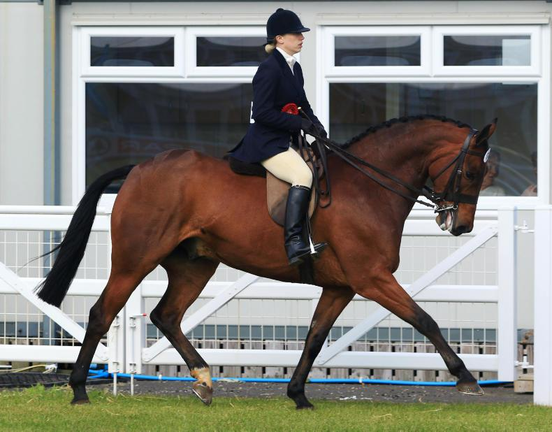 150th BALMORAL SHOW PREVIEW:  Central showcase for performance classes