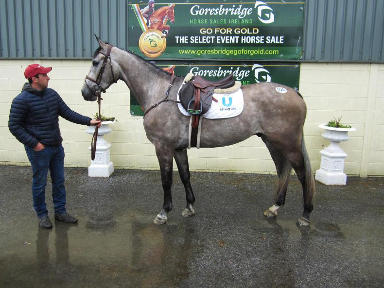GORESBRIDGE SALES:  Lively trade returns €9,800 sale-topper