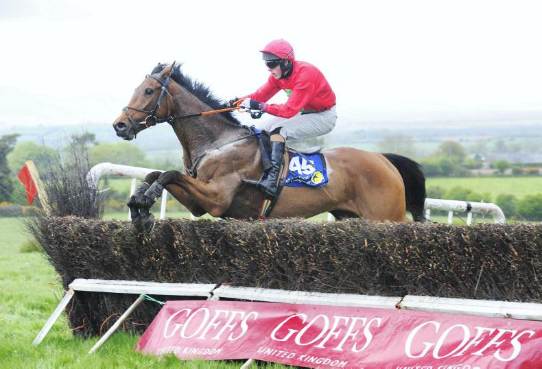 BARTLEMY SUNDAY UNITED FOXHOUNDS: A bright future in store for Ask For Glory