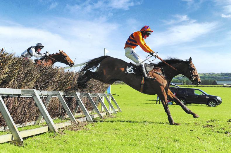 LOUGHANMORE SATURDAY: Bright future for Boru