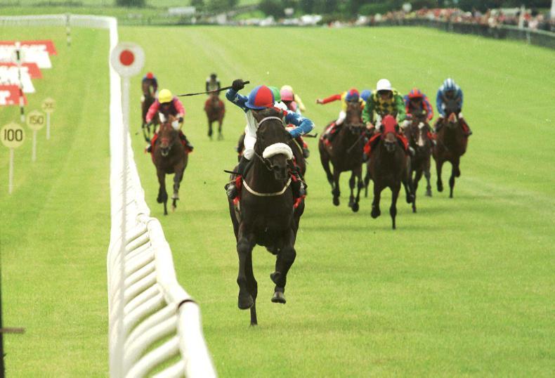 Classic race double for Arqana graduates