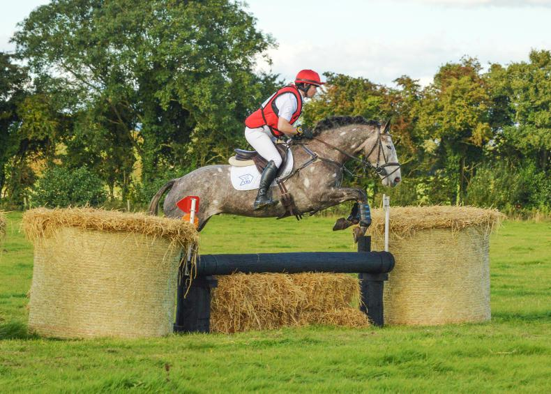 PONY TALES:  Another win for Cogan's namesake
