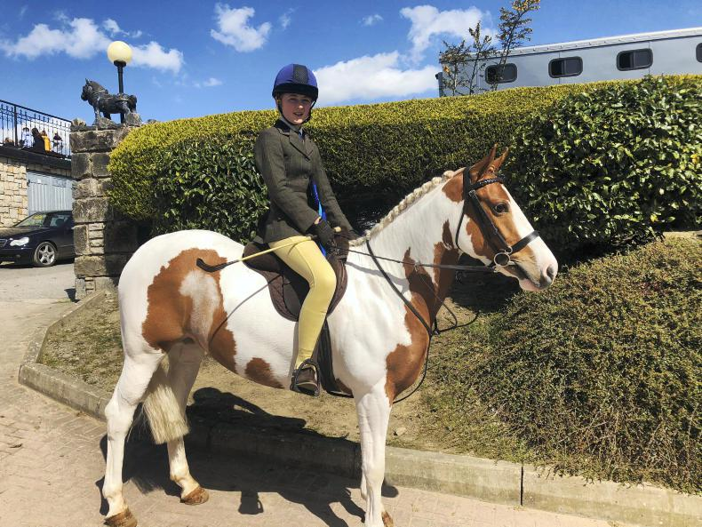 PONY TALES:  A bit of colour at Wexford Equestrian