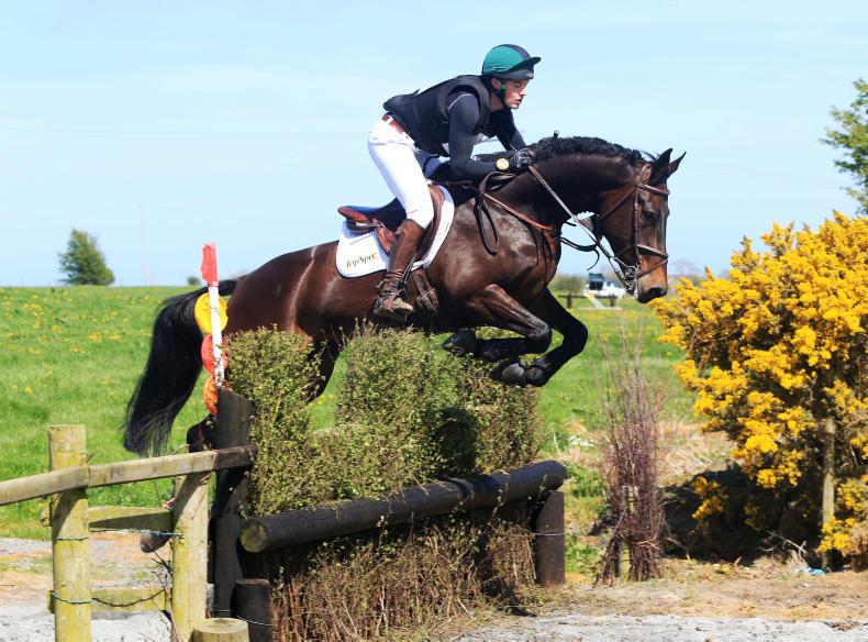 EVENTING:  Haugh strikes right note with Van Thee Man
