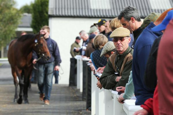 Delight as September Sale exceeds all expectations