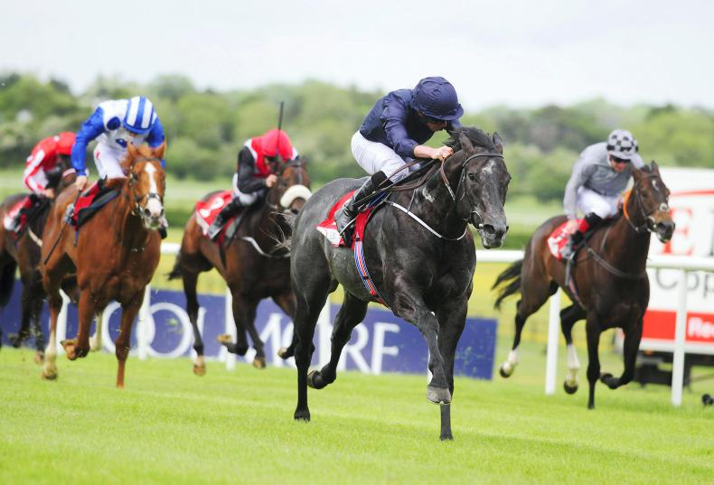 Three horses who could book their Royal Ascot ticket at Naas this Sunday