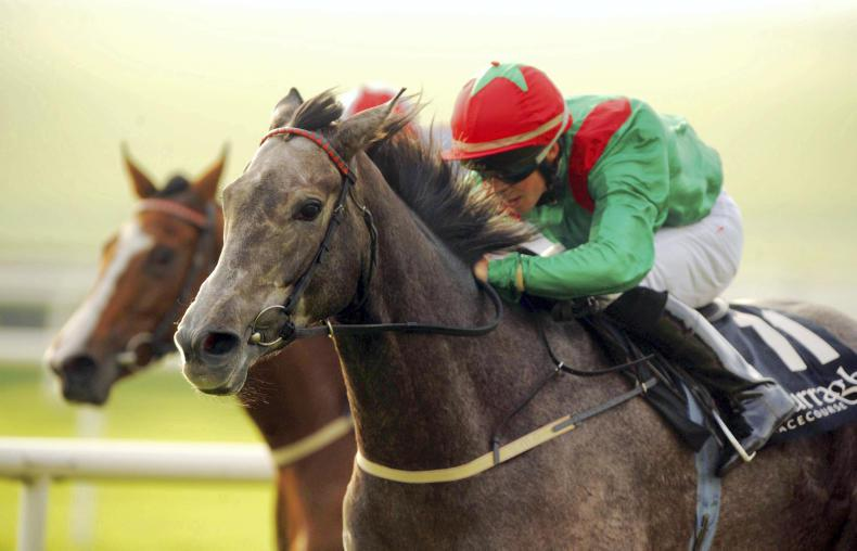 Harzand's profile receives a further boost