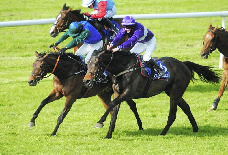 CLONMEL THURSDAY: Visioman sees success at Clonmel