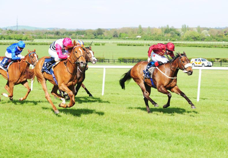 Lightening Quick set to take Classic test at the Curragh