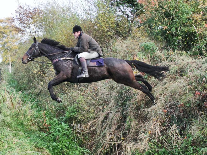 FEATURE:  Enda Bolger - a rare horseman