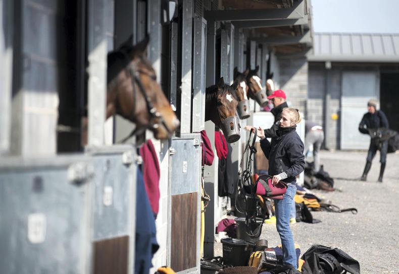 Half-price fare for stable staff at Naas