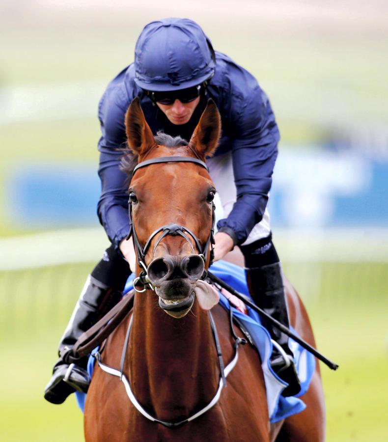 Rhododendron foils Lightning Spear in Lockinge Stakes thriller