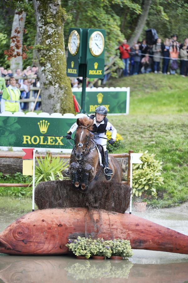 Irish Sport Horse studbook overtaken by Selle Francais